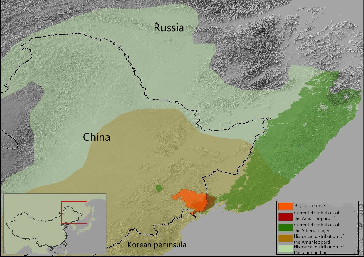 Chinas big cats get space to roam china dialogue extent of the new big cat national park map provided by feng limin gumiabroncs Image collections