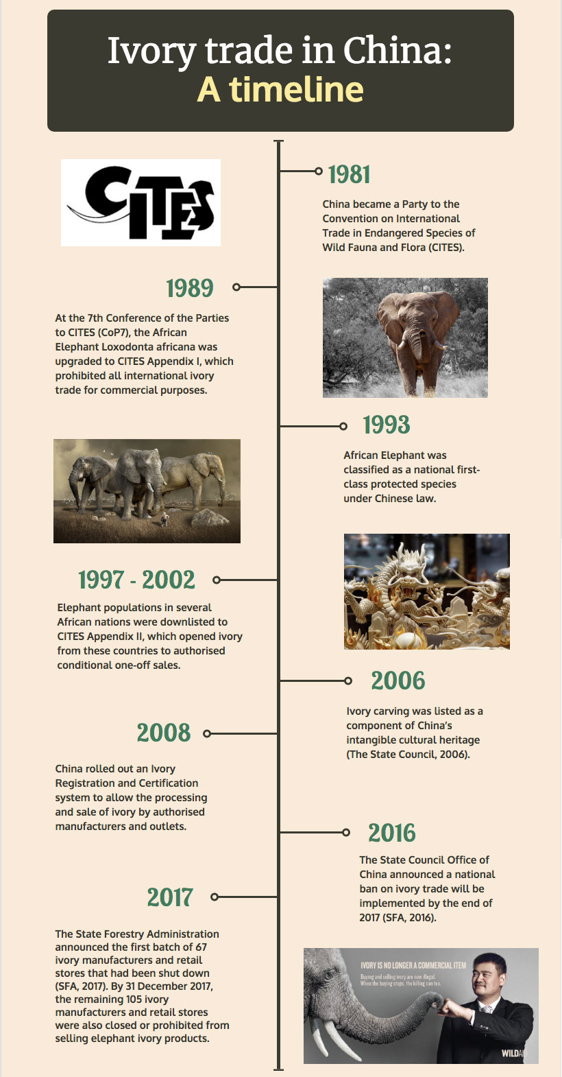 Ivory trade in China: A timeline