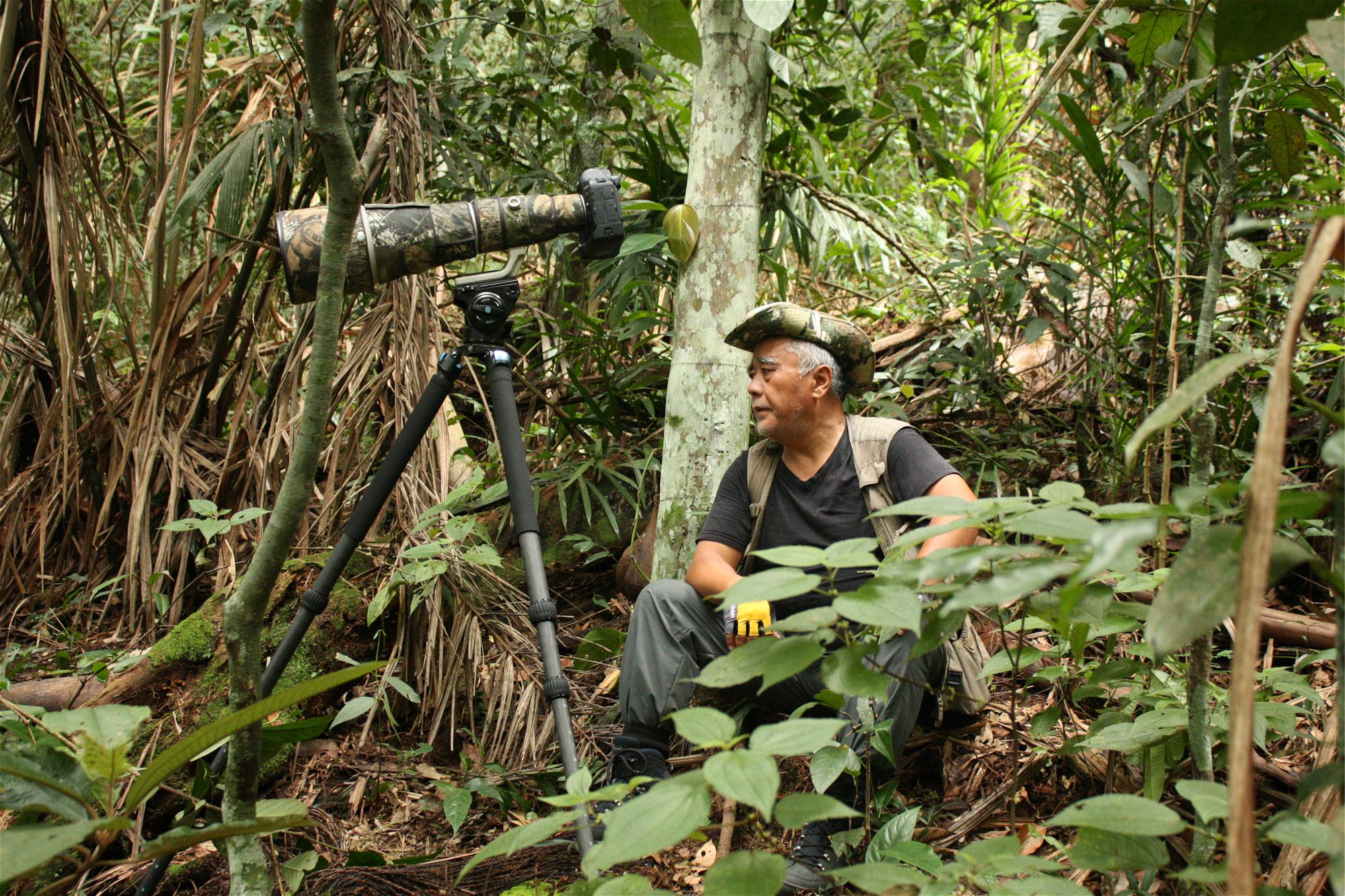 Zhuang Qiang, 55, waits for the cock-of-the-rock (image: Andrés Bermúdez Liévano)
