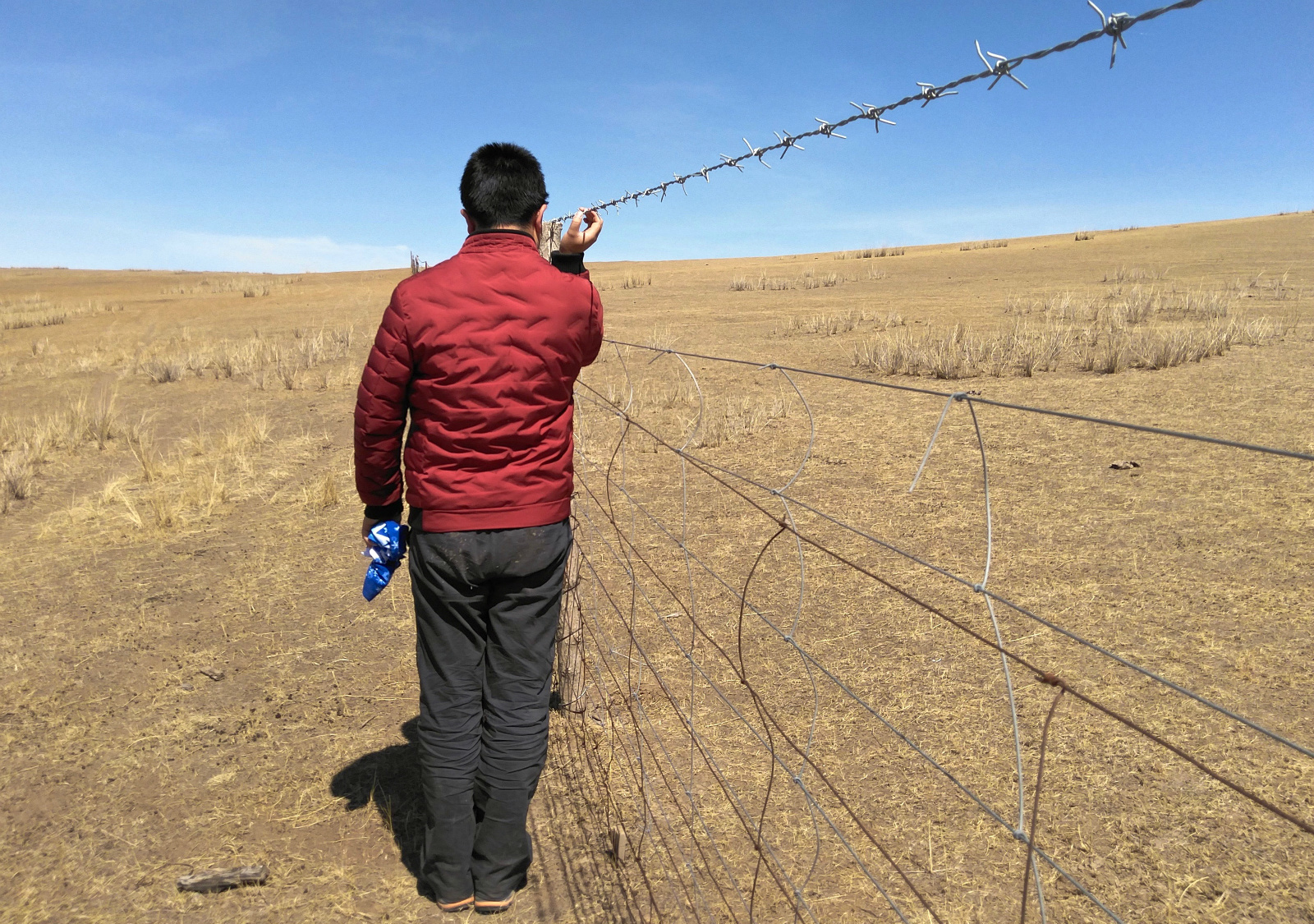 Grasslands divided by 1.5 metre-high fences – too high for wild animals (Image: Shao Wenjie)