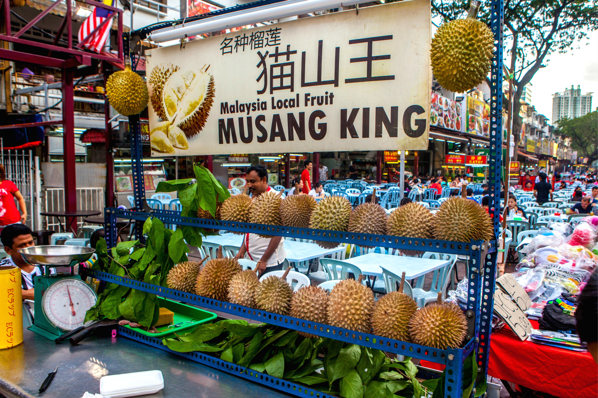 musang king, Malaysia