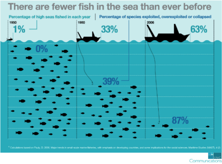 There are fewer fish in the sea than every before