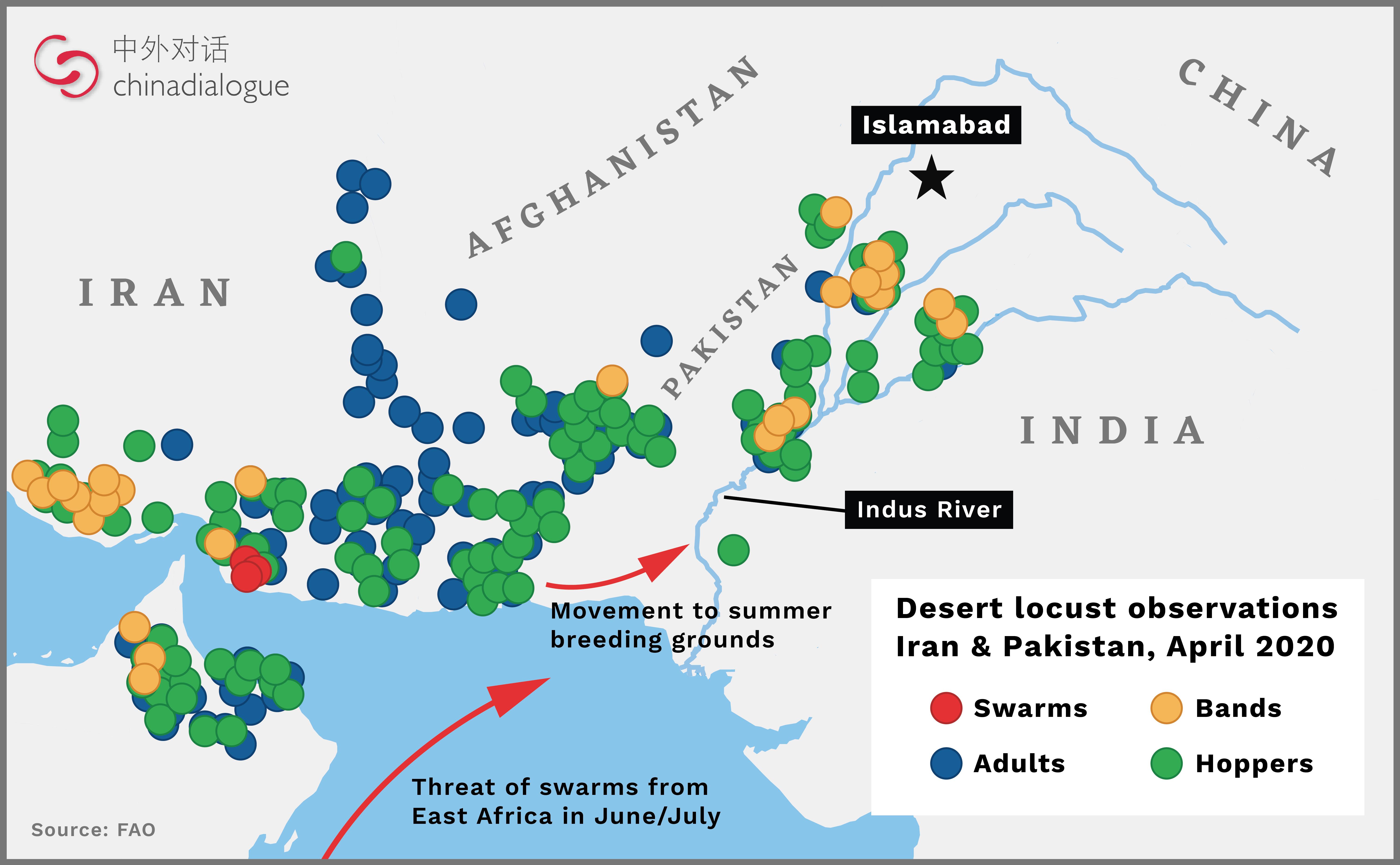 locust plague 2020 map
