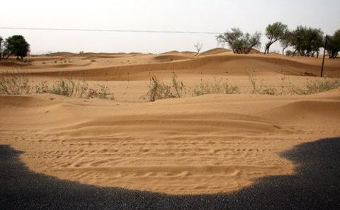 Main desert nine