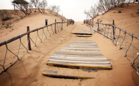 Main desert ten