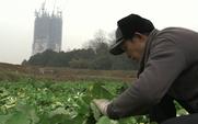 Aside farmer bbc meitu 5