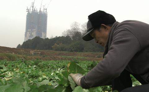 Main farmer bbc meitu 5