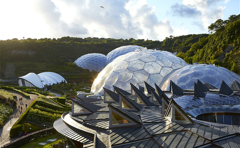 Homepage eden project 1