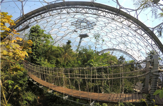 Main eden project 3