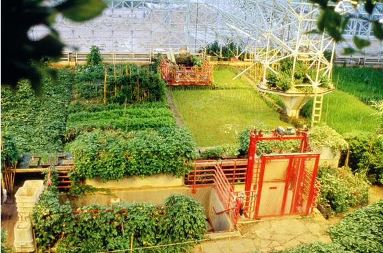 Main biosphere 2 6